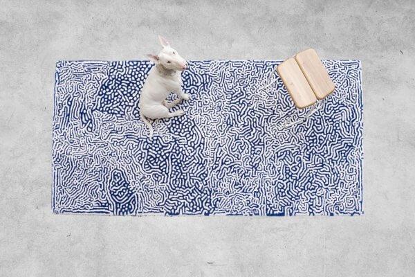 tapis3-1800x1200